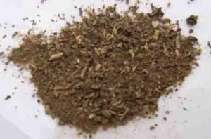 Sceletium dried