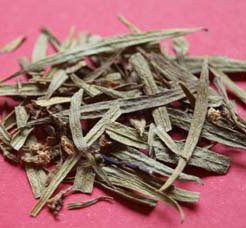 Pituri (Duboisia Hopwoodii) 5g